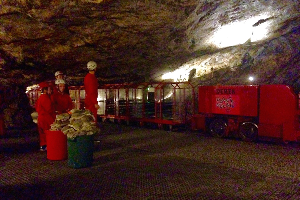 Derek the mining train