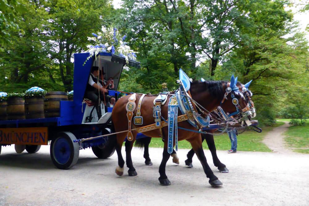 Horses in Englischer Garten, Munich