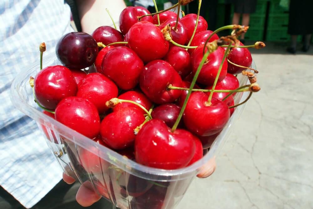 Seriously Juicy and Sweet In-Season Cherries