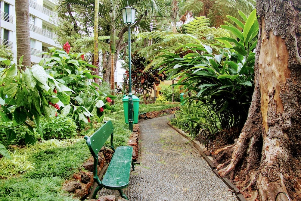 Jardim Municipal do Funchal is a peaceful & leafy park in the centre of town