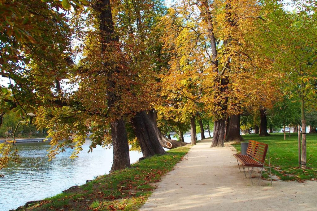 Střelecký Island is mostly a small park that locals love